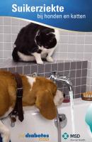 Suikerziekte bij honden en katten